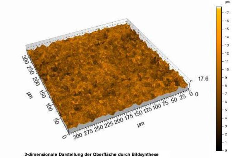 Abbildung: 3 dimensionale Darstellung der Oberläche, eines Titanimplantates, durch Bildsynthese